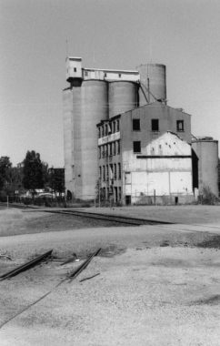 Tocumwal-Mill